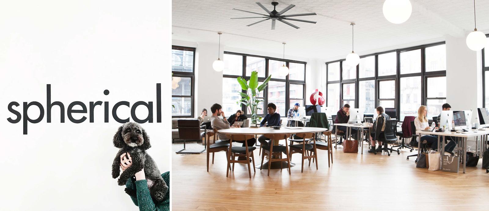 spherical-team-office